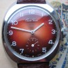 Cristal Watch marsala